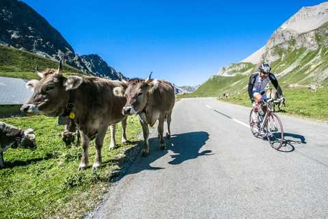 TORTOUR Ultracycling 2017